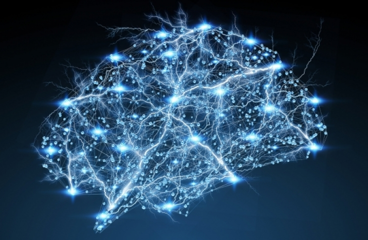 Artist's impression of neural pathways in brain
