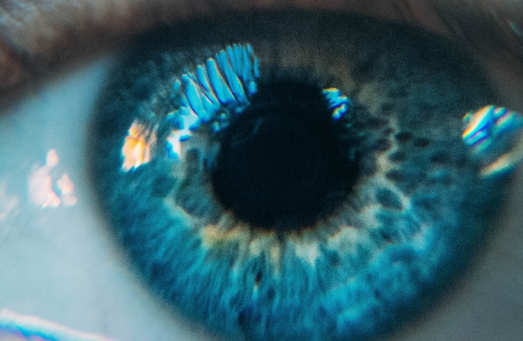 Close up of a an open human blue eye