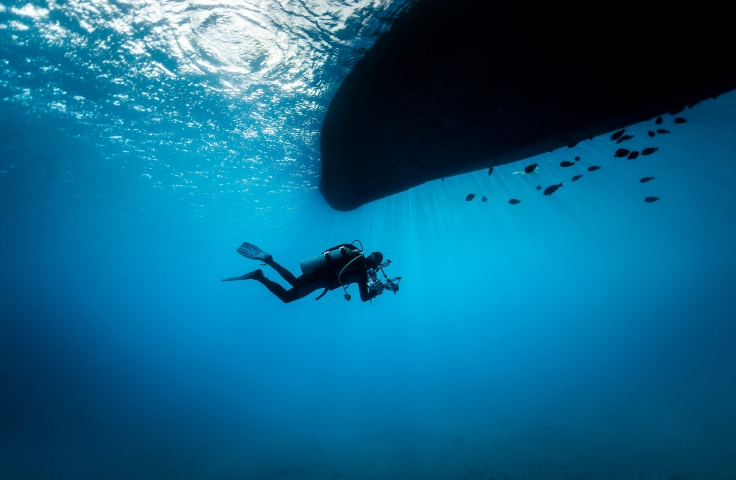 Science researcher diving to study marine life beneath a boat